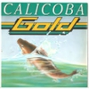 Cover of the track Calicoba