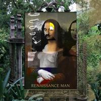 Couverture du titre The Renaissance Man Project