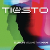 Cover of the track Young Blood (Tiësto & Hardwell remix)