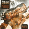 Couverture de l'album Hwezi