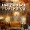 Cover of the album The Perfect Backdrop
