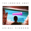 Couverture de l'album The Looking Away