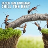 Couverture de l'album Chill The Best