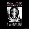 Cover of the album Ascensions