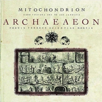 Cover of the track Archaeaeon
