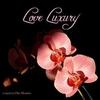 Couverture de l'album Love Luxury