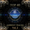 Couverture de l'album Top 40 Ambient Tracks, Vol. 2