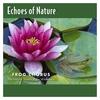 Cover of the album Frog Chorus