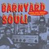 Couverture de l'album Barnyard Soul