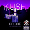 Cover of the track Kush