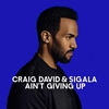 Cover of the album Ain't Giving Up - Single
