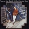 Cover of the album Delta Momma Blues