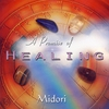 Cover of the album A Promise of Healing