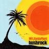 Cover of the album Bush Rock