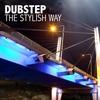Couverture de l'album Dubstep - The Stylish Way