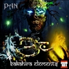 Cover of the album Pan