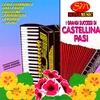 Cover of the album I grandi successi di Castellina Pasi