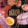 Couverture de l'album I Got Big Band Rhythm
