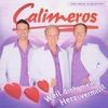 Cover of the album Weil dich mein Herz vermisst