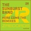 Couverture de l'album Here Come the Remixes