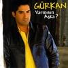 Couverture de l'album Varmisin Aska