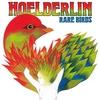 Couverture de l'album Rare Birds