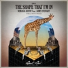 Cover of the album The Shape That I'm in (feat. James Stewart) - Single