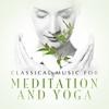 Couverture de l'album Classical Music for Meditation and Yoga