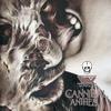 Couverture de l'album Cannibal Anthem