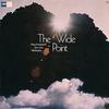 Couverture de l'album The Wide Point