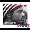 Cover of the track Soul Storm