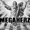 Cover of the track Gott sein (Suicide Commando remix)