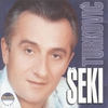 Couverture de l'album Seki Turkovic (Serbian Music)
