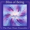 Couverture du titre The Bliss of Healing