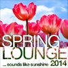 Cover of the album Spring Lounge 2014 (Sounds Like Sunshine)
