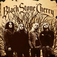 Cover of the track Black Stone Cherry