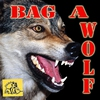 Couverture de l'album Bag a Wolf