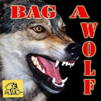 Couverture du titre Bag a Wolf