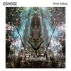 Couverture de l'album Osmose (Disk 1)