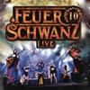 Cover of the album 10 Jahre Feuerschwanz - Live