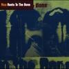 Couverture de l'album Roots to the Bone