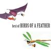 Couverture de l'album Best of Birds of a Feather