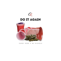 Cover of the track Do It Again - Single