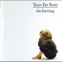 Cover of the track The Hurting (Remastered)