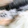 Cover of the album Bleu merle - EP
