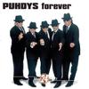 Couverture de l'album Puhdys Forever