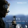 Couverture de l'album Alpine Grooves, Vol. 3 (Kristallhütte)