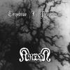 Cover of the album Tenebrae in Perpetuum / Krohm