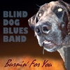 Cover of the album Burnin' for You