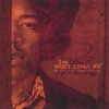 Cover of the album The Spirit Lives On - the Music of Jimi Hendrix Revisited vol II